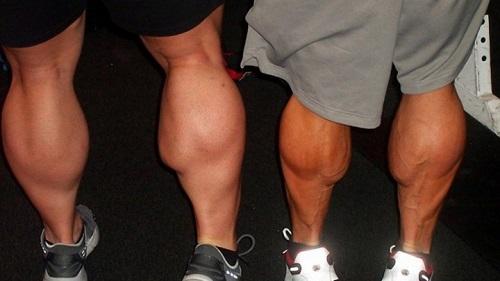 bắp chân to do cơ