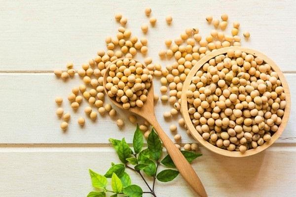 cách dùng làm, sử dụng, uống bột mầm đậu nành có tác dụng giúp giảm cân không, để giảm cân, với mầm đậu nành