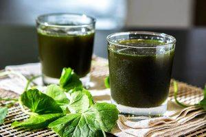 Uống nước ép rau má có giảm cân không? Cách làm nước rau má giảm cân chuẩn chuyên gia