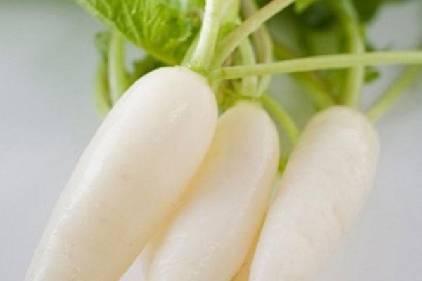 giảm cân bằng củ cải trắng, ăn củ cải trắng có giảm cân không, calo trong củ cải trắng, củ cải trắng bao nhiêu calo, ăn củ cải trắng giảm cân,