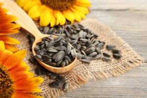 Ăn hạt hướng dương có bao nhiêu calo? Hạt hướng dương có tốt cho sức khỏe không?