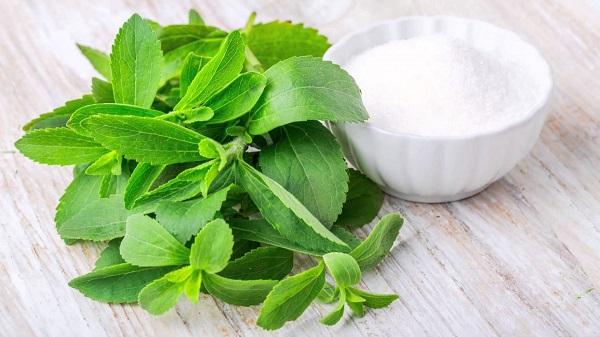 lá cây tiêu mỡ, các loại lá có tác dụng giảm cân, giảm cân bằng cây cỏ, loại lá uống giảm cân, các loại lá uống giảm cân, những loại lá uống giảm cân, loại lá nào uống giảm cân, các loại lá cây uống giảm cân