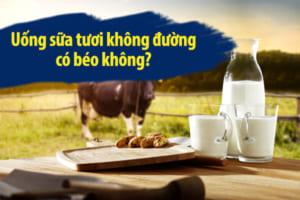 Giải đáp chính xác nhất uống sữa tươi không đường có béo không?