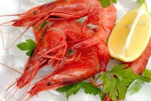 Ăn tôm có giảm cân không? Tiết lộ lượng calo có trong các món tôm quen thuộc