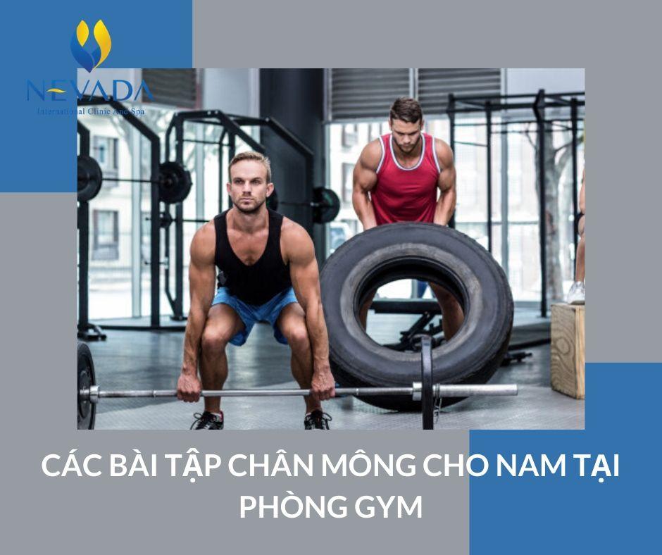 Tổng hợp các bài tập chân mông cho nam tại phòng gym được các huấn luyện viên thể hình gợi ý