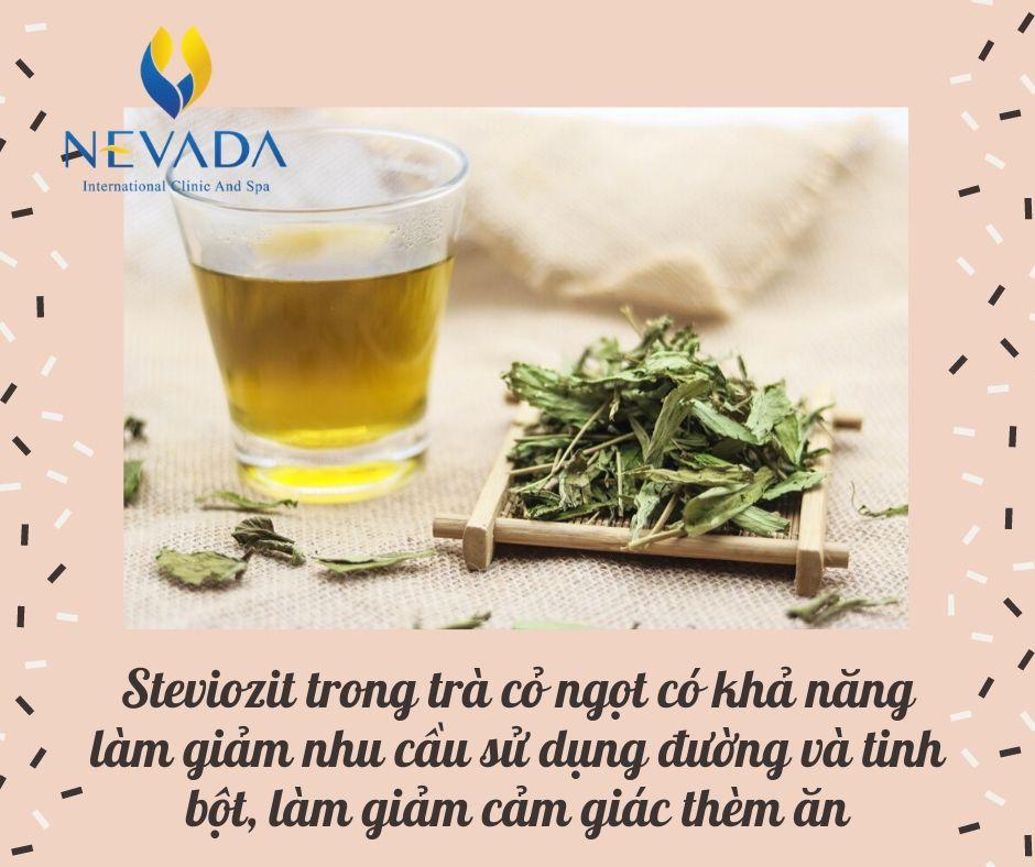 trà cỏ ngọt tác dụng, trà cỏ ngọt có tác dụng gì, trà cỏ ngọt bao nhiêu calo, uống trà cỏ ngọt có tốt không, uống trà cỏ ngọt nhiều có tốt không