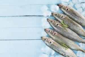 100g cá nục chứa bao nhiêu calo? Ăn cá nục có béo không?