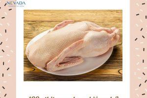 100g thịt ngan bao nhiêu calo? Ăn thịt ngan có béo không?