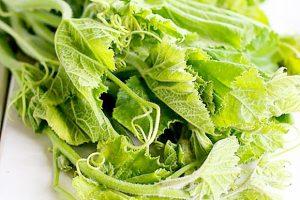 100g rau bí bao nhiêu calo? Ăn rau bí có giảm cân không?
